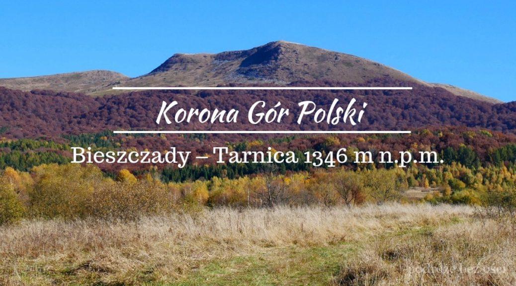Bieszczady Tarnica 1346 M N P M Korona Gor Polski Podroze Bez Osci